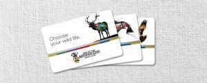 IMG-148-giftcard-740x300